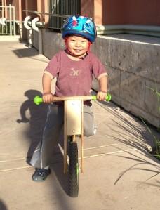 Fox on bike
