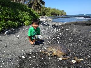 son with sea turtle