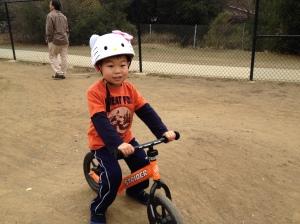 Fox with bike
