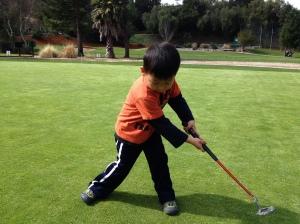 Fox Golfing